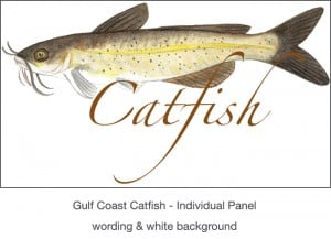 Casart_Gulf Coast Catfish white & wording_3x