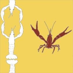 Casart_Crawfish-Cotillion White Red Yellow 2_24