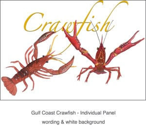 Casart_Crawfish white & wording -Gulf Coast Design_3x