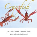 Casart_Crawfish water & wording - Gulf Coast Design_4x
