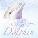 Casart coverings Element: Dolphin no. 1 – Gulf Coast DesignPanel water & wording_4