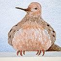 Casart Coverings Dove removable mini mural wallpaper - Designs & Murals_1