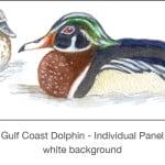 Casart_Gulf Coast Ducks_Panel white_1x