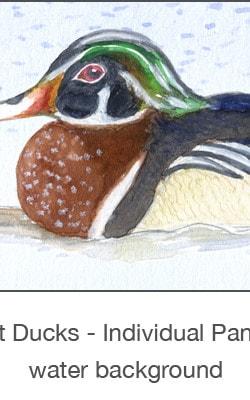Casart_Gulf Coast Ducks_Panel water_2x