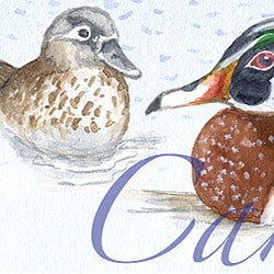 Casart Coverings Element: Ducks no. 3 – Gulf Coast Design water & wording_4