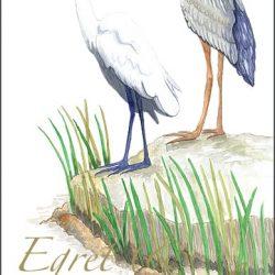Casart_Gulf Coast Birds - white & wording_3x
