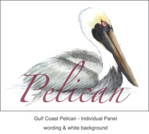 Casart_Gulf Coast Pelican white & wording_3x