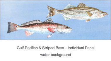 Casart_Gulf Coast Redfish_Bass water_2x