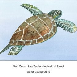 Casart Coverings_Gulf Coast Sea Turtle water_2x