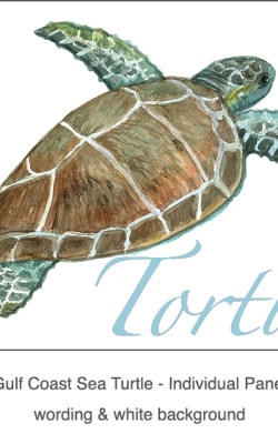 Casart Coverings_Gulf Coast Sea Turtle white & wording_3x