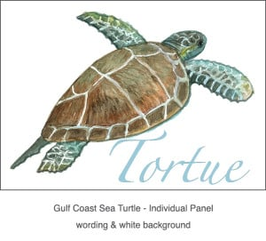 Casart_Gulf Coast SeaTurtle white & wording_3x