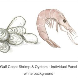 Casart_Gulf Coast Shrimp Oysters white_1x