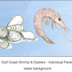 Casart_Gulf Coast Shrimp Oysters water_2x