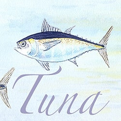 Casart coverings Element: Tuna no. 6 – Gulf Coast Design
