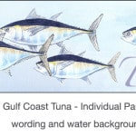 Casart_Gulf Coast Tuna water & wording_4x
