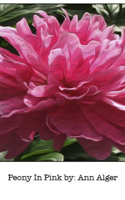 Casart Peony In Pink Bloom Series - Ann Alger 3x