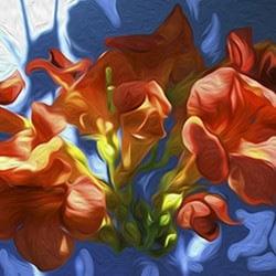 Casart coverings Trumpet on Blue – Bloom Series | Ann Alger