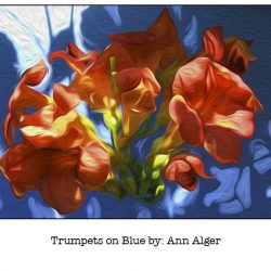 Casart Trumpet On Blue Bloom Series - Ann Alger 4x