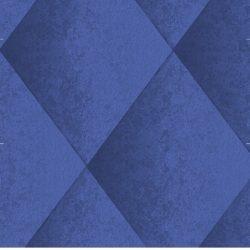 Casart Dark Blue Harlequin 11x variation