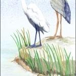Casart coverings Gulf Coast Egret Birds_2x