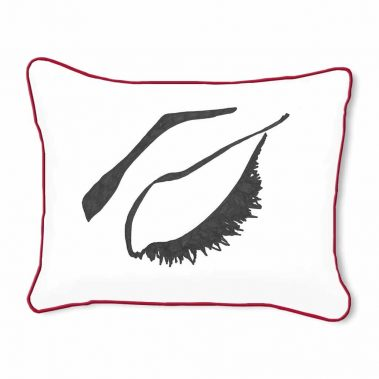 Casart Decor_Expressive Eyes_rtC-B_14x18-w-red_pillow slipcover