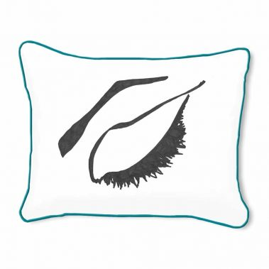 Casart Decor_Expressive Eyes_rtC-B_14x18-w-turquoise_pillow slipcover