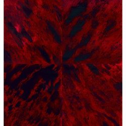 Casart Coverings Faux Tortoiseshell 2 Red removable wallpaper Sample feature