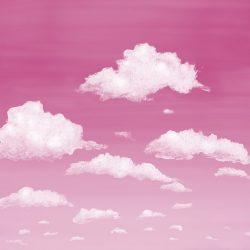 1_Casart coverings Stratocumulus Clouds_Sunrise_temporary wallpaper