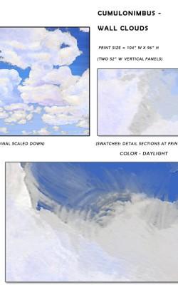 Casart coverings_Cumuloninbus_Wall Cloud Daylight Sample_temporary wallpaper