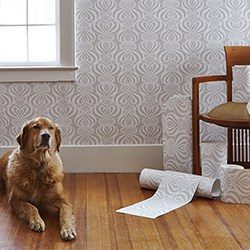 POZdesign Lovelace product feature_Casart Coverings removable wallpaper