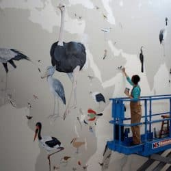 Jane Kim of InkDwell uses Casart custom wallcovering as stencils to paint her 70 x 40 foot bird evolution mural for Cornell University Orinthology Department