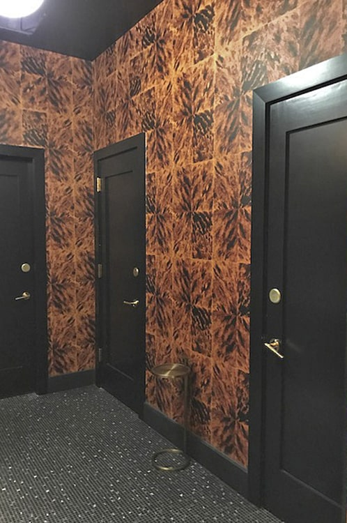 Casart Coverings Faux Tortoiseshell Bathroom doors_commercial wallpaper