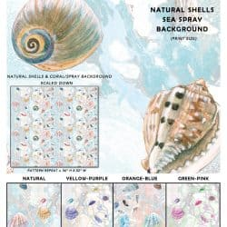 Casart Coverings Shells Sample 1 removable wallpaper