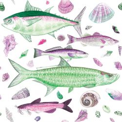 Casart Coverings Shell Fish Green Pink White Background removable wallpaper