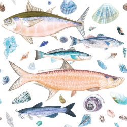 Casart Coverings Shell Fish Orange Blue White Background removable wallpaper