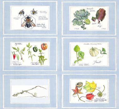 Casart Nature Noticed Panel 1 Bookcase Backing 3 reusable wallpaper